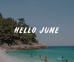 beach, beauty, and june image