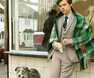 beautiful, gucci, and gucci suit image