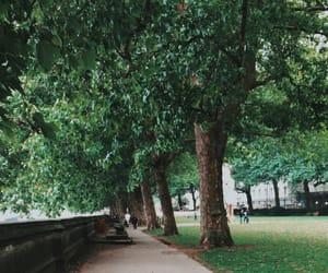 green, love, and inglaterra image