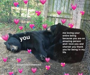 me, memes, and wholesome memes image