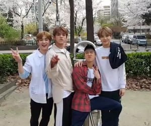 lucas, ten, and jungwoo image