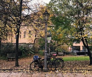 autumn, places, and street image