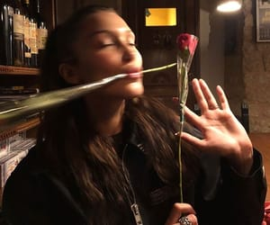 bella hadid, model, and rose image