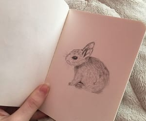 aesthetic, rabbit, and soft image