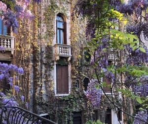 arch, architecture, and flowers image