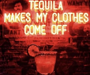 alcohol, tequila, and wild image
