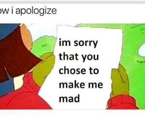 apologize, crazy, and meme image