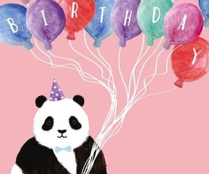 happy birthday, panda, and oso panda image