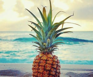 ananas, great, and sea image