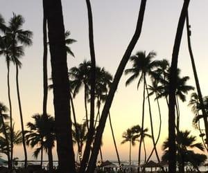 beach, california, and luxury image
