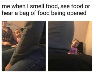 food, sarcasm, and funny image