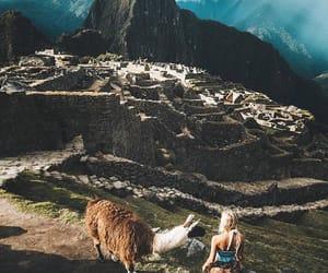 lama, travel, and machu picchu image