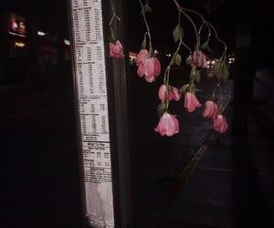 flowers, dark, and grunge image