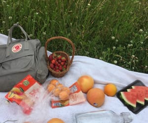 picnic, aesthetic, and photography image