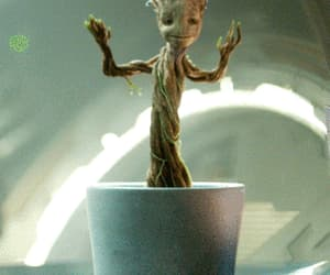groot, gif, and guardians of the galaxy image