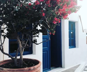 flowers, greek, and Island image