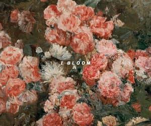 aesthetic, bloom, and Lyrics image