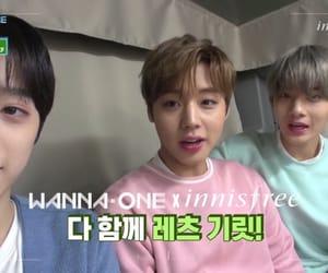 jihoon, jinyoung, and guanlin image