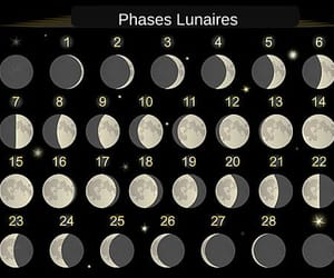 lunar, moon phases, and bullet journal image