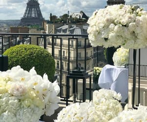 flowers, paris, and city image