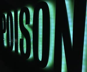 green, lights, and neon image