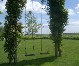 green, swing, and nature image