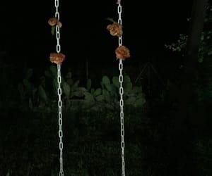 rose, swing, and tumbler image