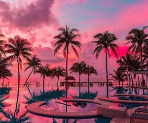 pink, beach, and nature image