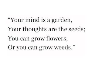 quotes, flowers, and garden image