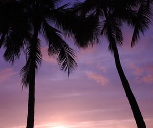 hawaii, waikiki, and sunsets image