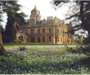 castle, flowers, and house image