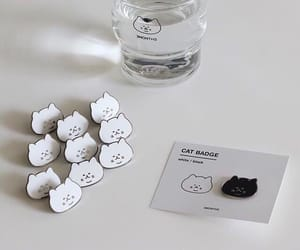 aesthetic, cat, and minimalist image