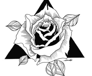 art, draw, and rose image
