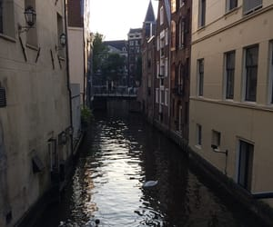 amsterdam, holland, and nature image