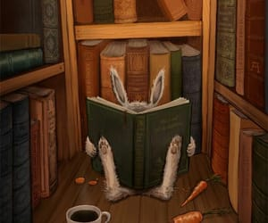 books, bunny, and read image