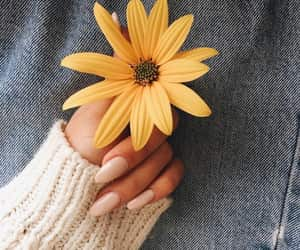 nails, flowers, and yellow image