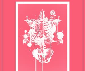 bones, iphone, and pink image