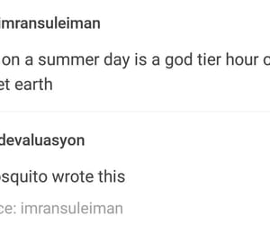 mosquito, summer, and tumblr image