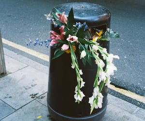 flowers, indie, and trash image