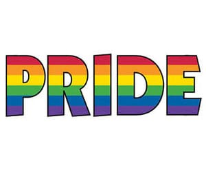 happy, pride, and words image