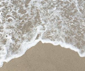 california, praia, and tropical image