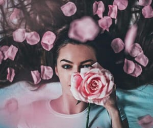 photography, pink, and aesthetic image