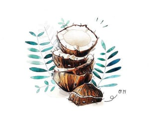 art, coco, and coconuts image