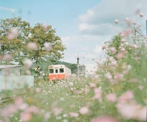 flowers, japan, and pastel image