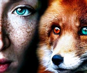 girl, beauty, and fox image