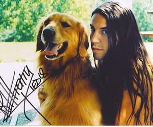 alternative, brunette, and dog image