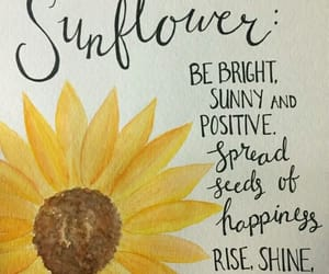 lines, sunflower, and words image