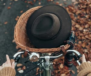 autumn, hat, and transport image