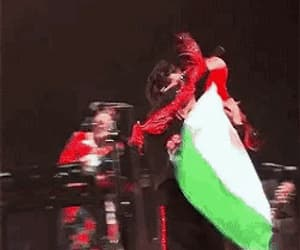flag, gif, and mexico image