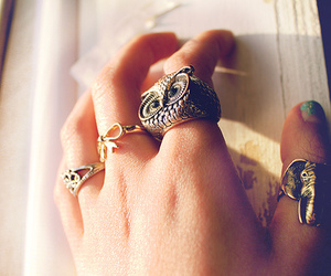 rings, owl, and hand image